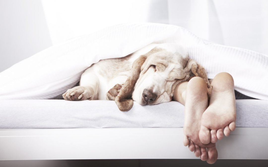 3 Practical Solutions to Better Sleep